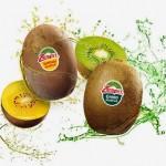 Kiwi-Zespri-SunGold-y-Green